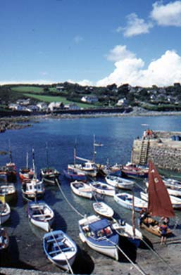 Coverack on the Lizard Peninsula